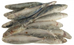Frozen Whole Scad Fish 1kg (2.2lbs) (Ordered with dog food)  Working Dog