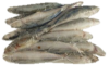 Frozen Whole Scad Fish 1kg (2.2lbs) Working Dog *ADD ON ITEM